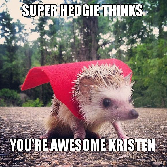 Super Hedgie Thinks You Re Awesome Kristen Kristen Make A Meme