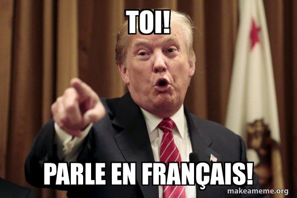 Toi Parle En Francais Make A Meme