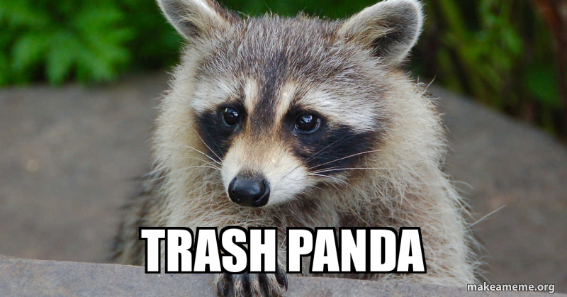 Trash Panda Make A Meme