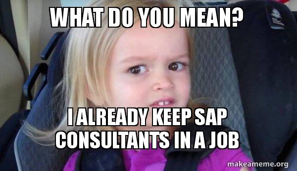 What Do You Mean I Already Keep Sap Consultants In A Job Side