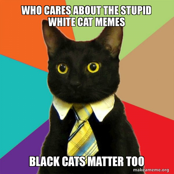 Who Cares About The Stupid White Cat Memes Black Cats Matter Too
