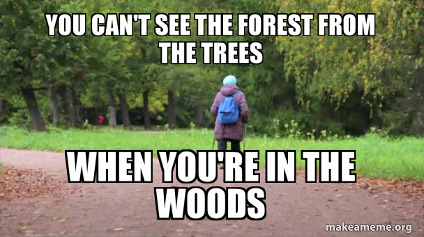 You Can T See The Forest From The Trees When You Re In The Woods