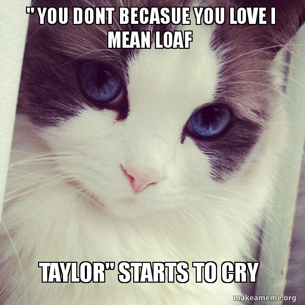 I Love Math It Makes People Cry Meme
