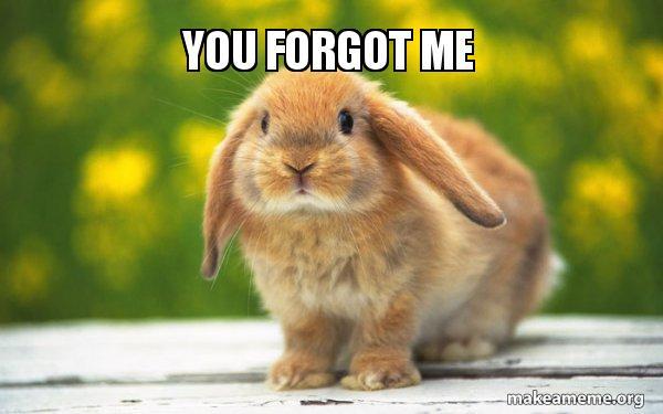 You Forgot Me Regretful Rabbit Make A Meme
