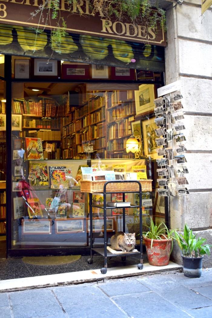 bokhandel i barcelona med katt utanför