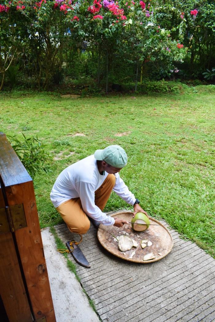 bohol-öppna-kokosnötter