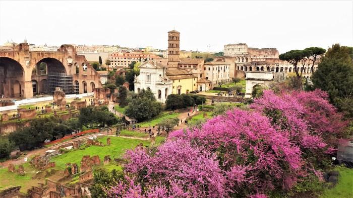 utsikt över forum romanum och colosseum