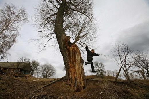 A Ukrainian child jumps off a tree next to his home at the village of Zurin just outside the exclusion zone, a highly contaminated 18-mile area surrounding the Chernobyl nuclear power plant. // Oded Balilty / AP