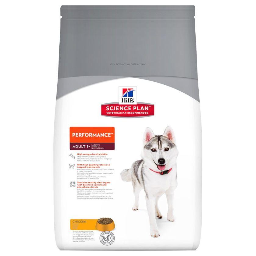 12kg Performance Hill's Canine au poulet pour chien