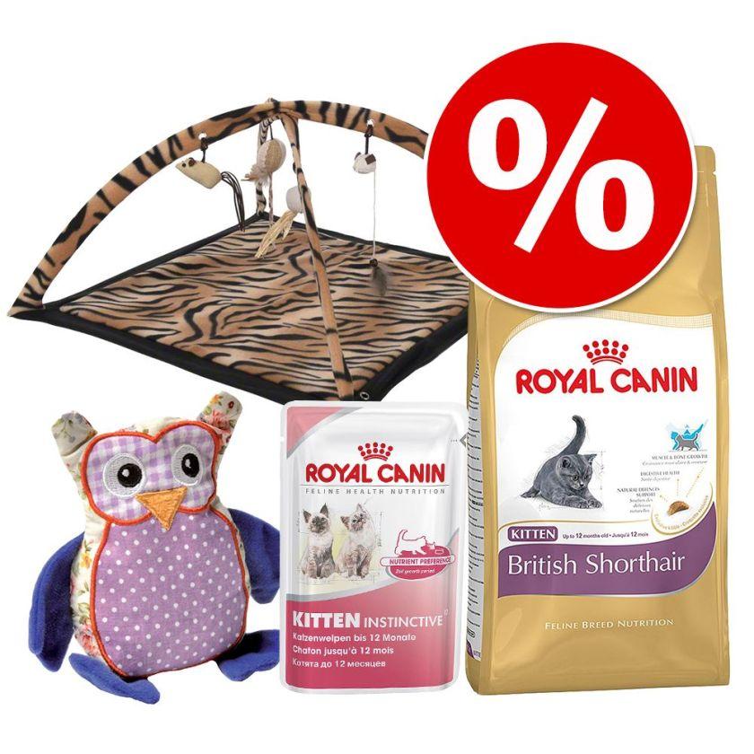 Lot Royal Canin British Shorthair pour chaton - 2 kg Kitten British Shorthair + 12 x 85 g Kitten Instinctive en sauce + tapis de jeu + coussin de jeu