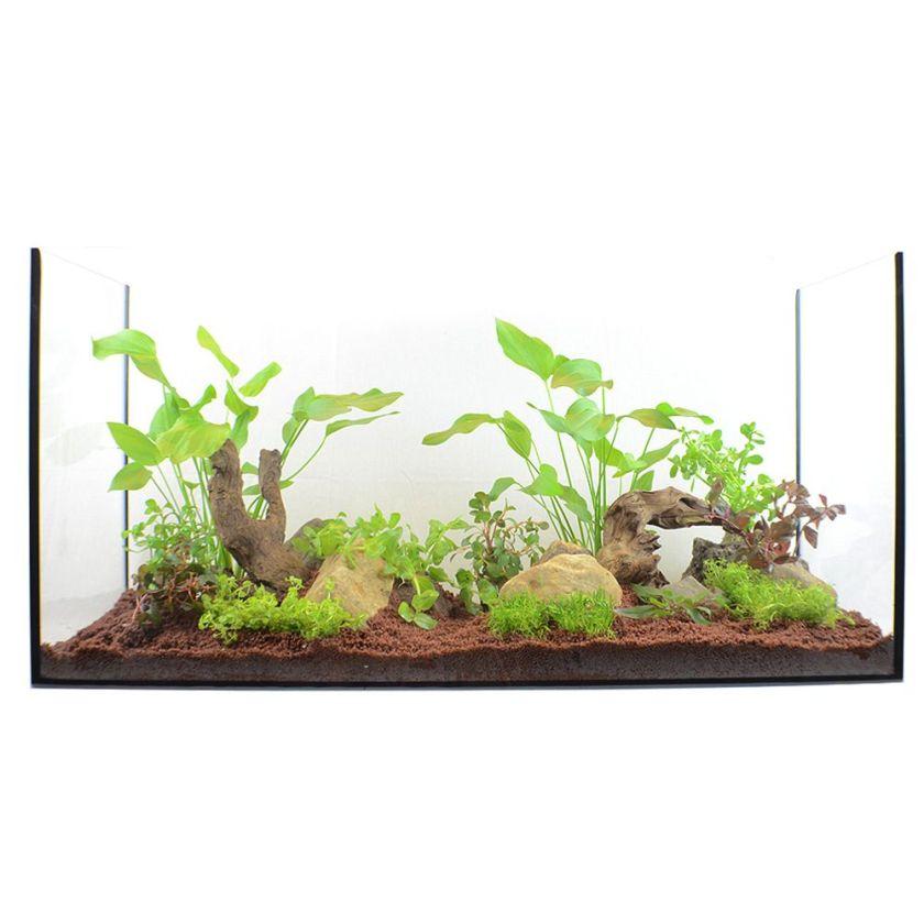 Lot de plantes pour aquariums de 100 à 120 cm - 15 plantes en pot