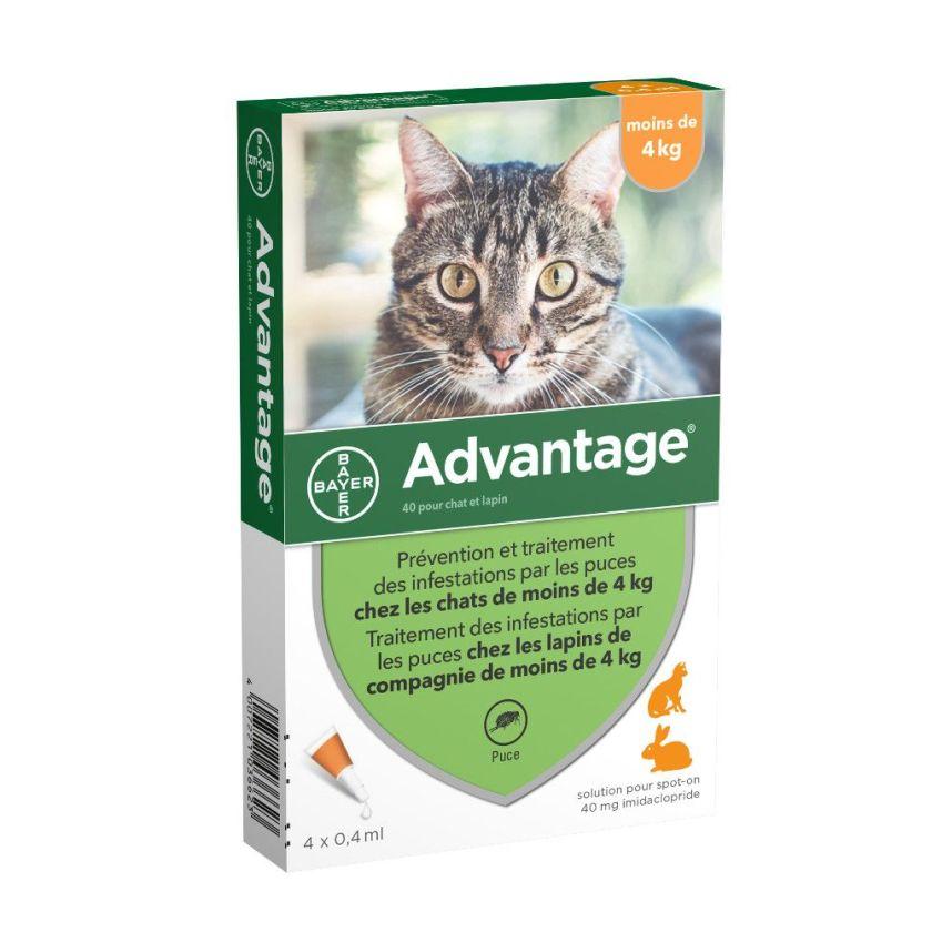 Advantage® 40 pour chat et lapin < 4 kg - 4 mois de protection (4 pipettes)