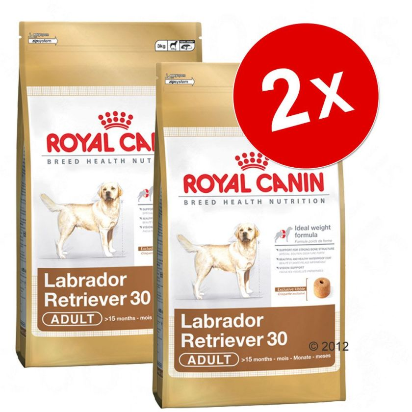 Lot Royal Canin Breed, x 2, pour chien - Jack Russel Adult (2 x 7,5 kg)