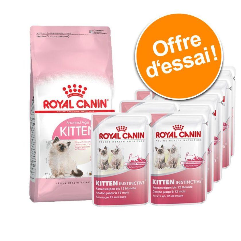 Lot mixte Royal Canin Kitten 400 g + 12 x 85 g Kitten Instinctive - 400 g British Shorthair Kitten + 12 x 85 g Instinctive en gelée