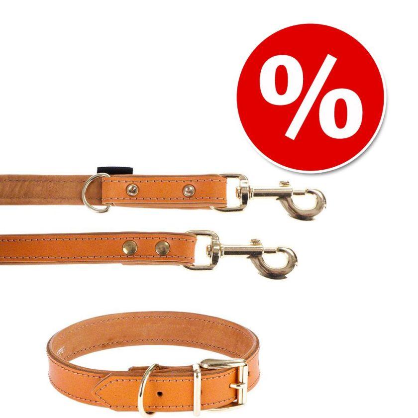 Lot Heim Buffalo, cognac : collier + laisse pour chien - lot collier taille 60 + laisse L 200 cm