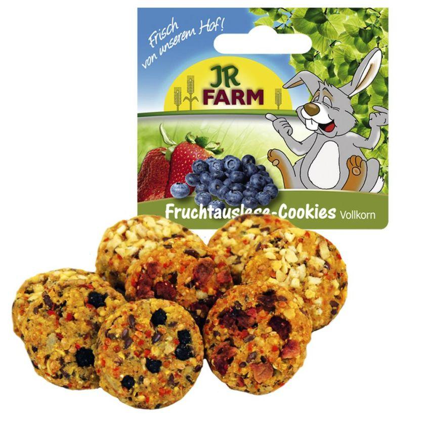 JR Farm Friandises complètes aux fruits pour rongeur - 2 x 8 friandises