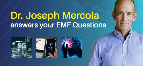 Dr. Mercola Answers Your EMF Questions