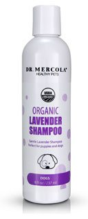 Organic Lavender Shampoo for Dogs