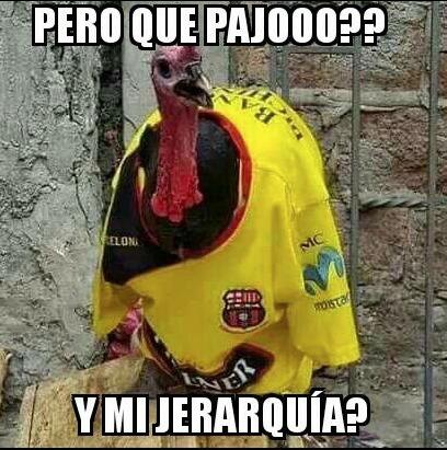 Los Mejores Memes Que Dejaron Las Semifinales De La Copa Ecuador