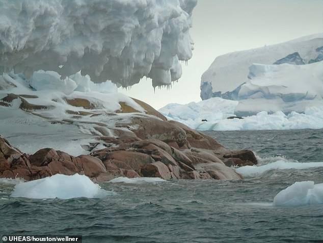 Antártida: científicos descubren nueva isla debido al derretimiento de los glaciares