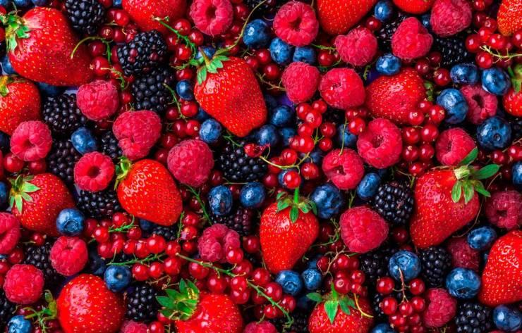 Coronavirus: estos son los alimentos con los que podrás incentivar el Sistema Inmunológico