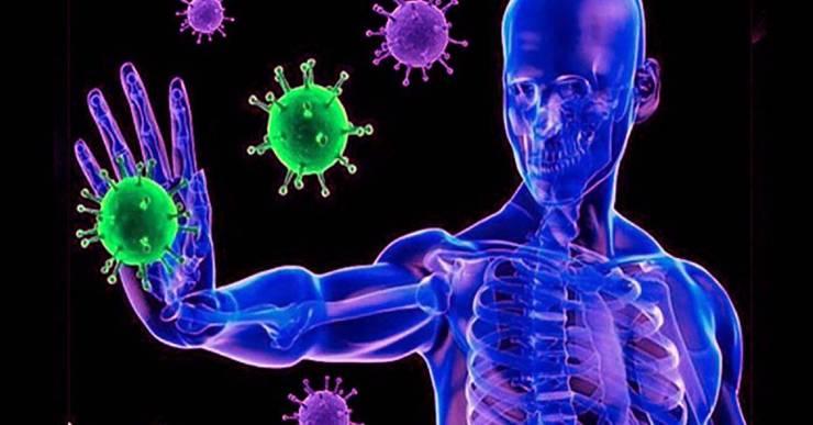 Coronavirus: ¿Qué es y para qué sirve la Inmunoglobina G?