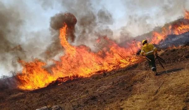 Focos de incendio activos en Jujuy