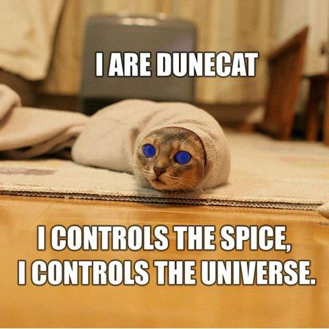 I ARE DUNE CAT, I CONTROLZ TEH SPICE, I CONTROLZ TEH UNIVERSE