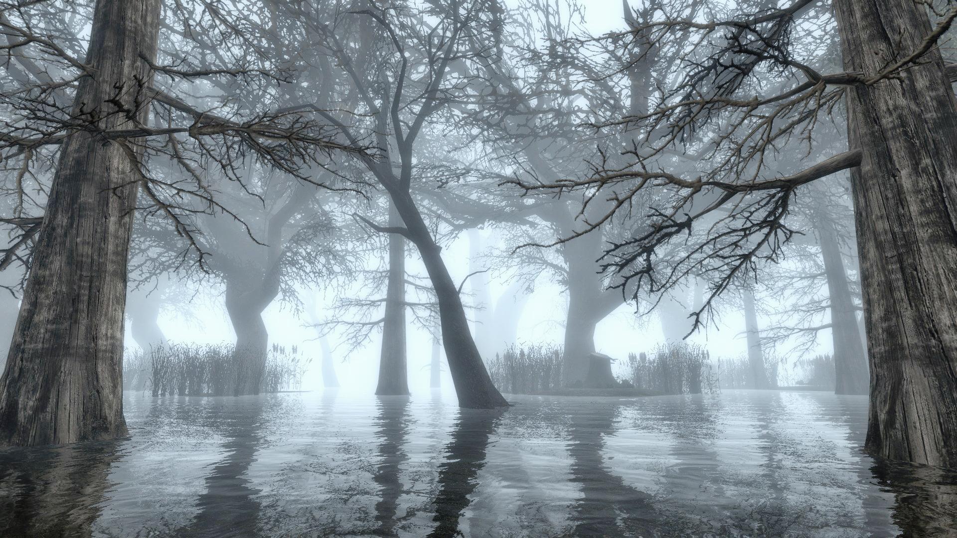 Alpha Swamp Image