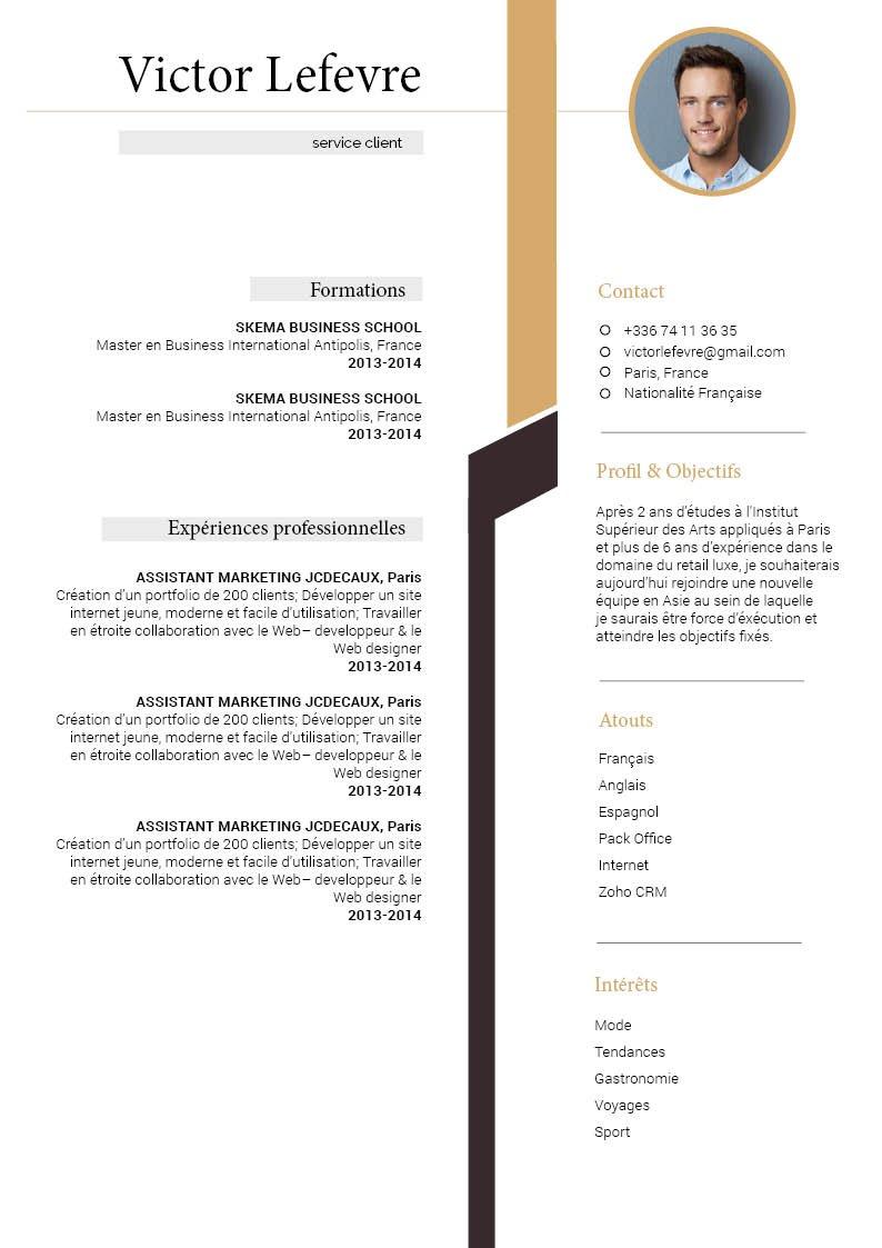 Curriculum Vitae Cv Simple Et Classe Mycvfactory