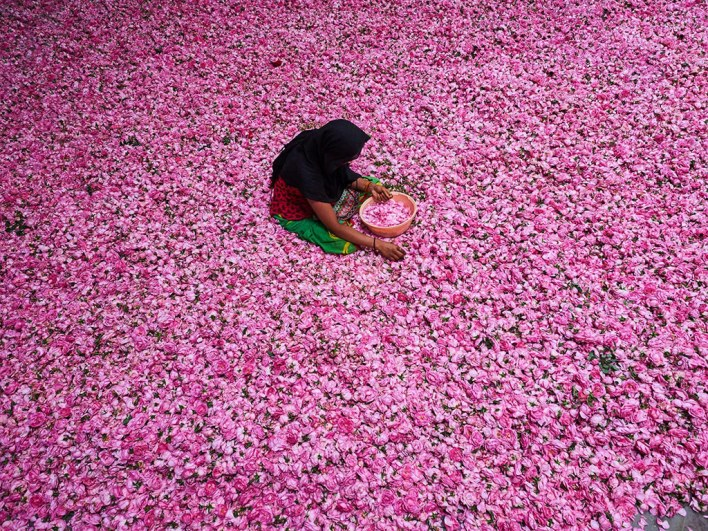 This Ancient Town in Uttar Pradesh is the Perfume Capital of India 5