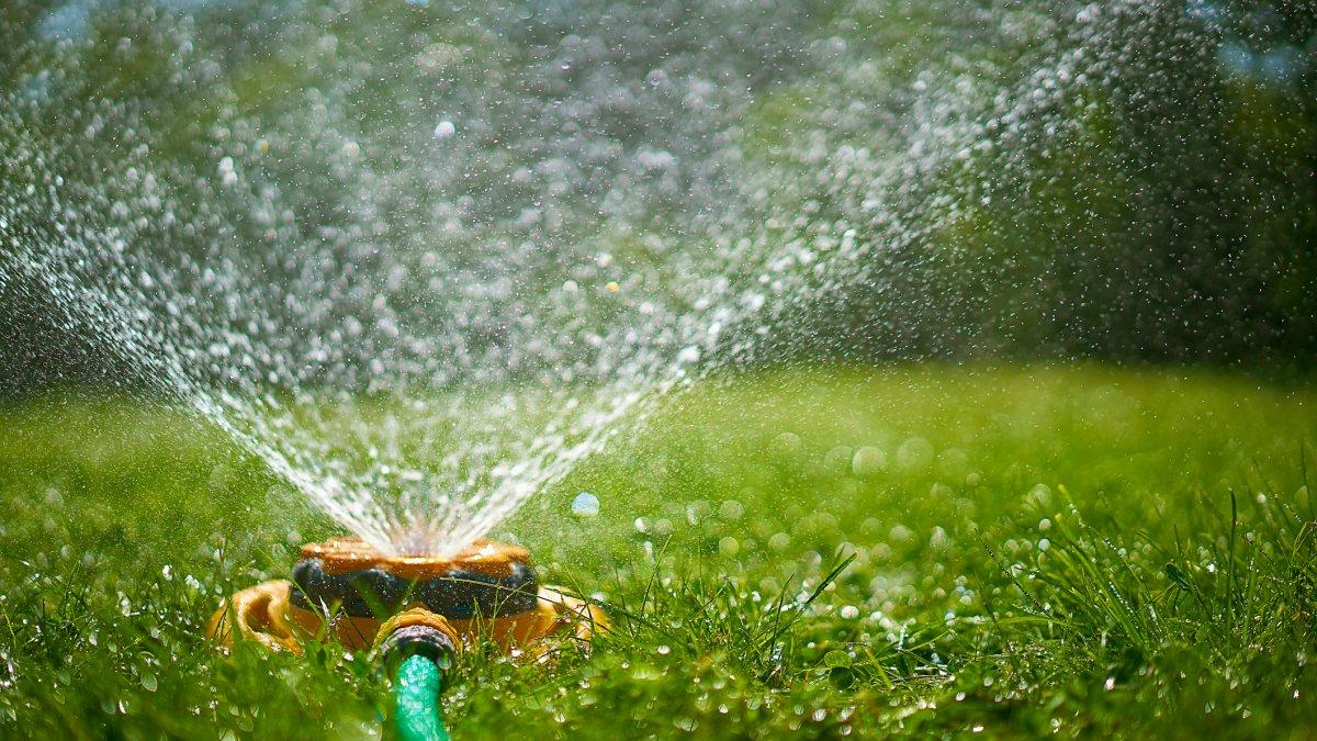 Sprinklers Banned in Healdsburg as City Declares Drought Emergency - NBC Bay Area