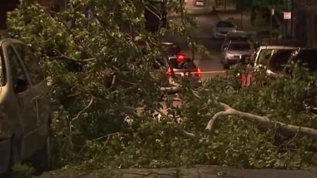 Fast-Moving Storms Whip Through College Point, Queens