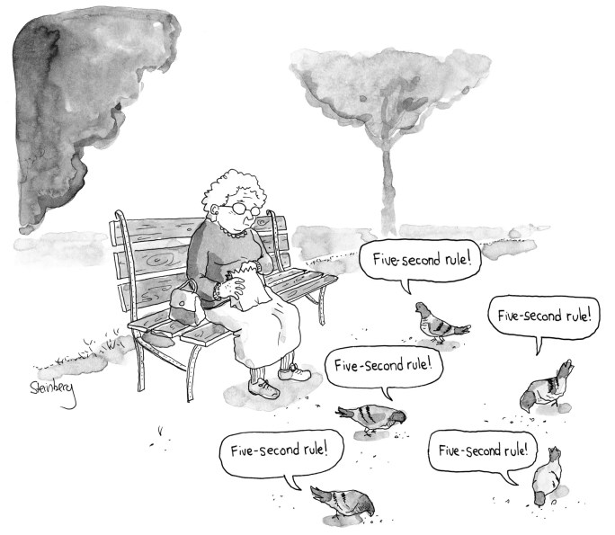 An elderly woman throws birdseed on the ground the pigeons peck the seed from the ground saying 'Fivesecond rule'
