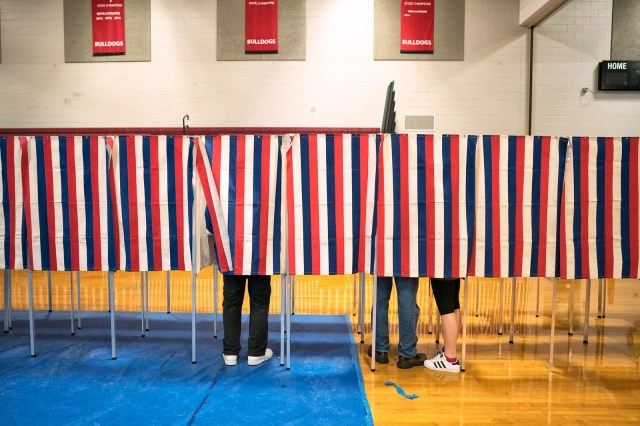 A photograph of voters at the polls