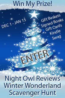 Win Books and Prizes in the Night Owl Reviews Winter Wonderland Web Hunt