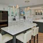 Cool Contemporary Kitchen Remodel Nkba