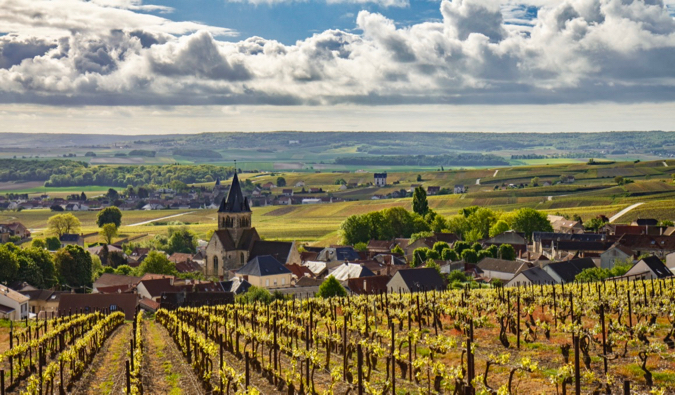 The rolling yellow fields of the Champagen region of France after the harvest