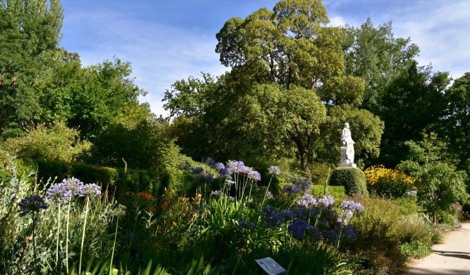 The Royal Botanical Gardens in Madrid, Spain