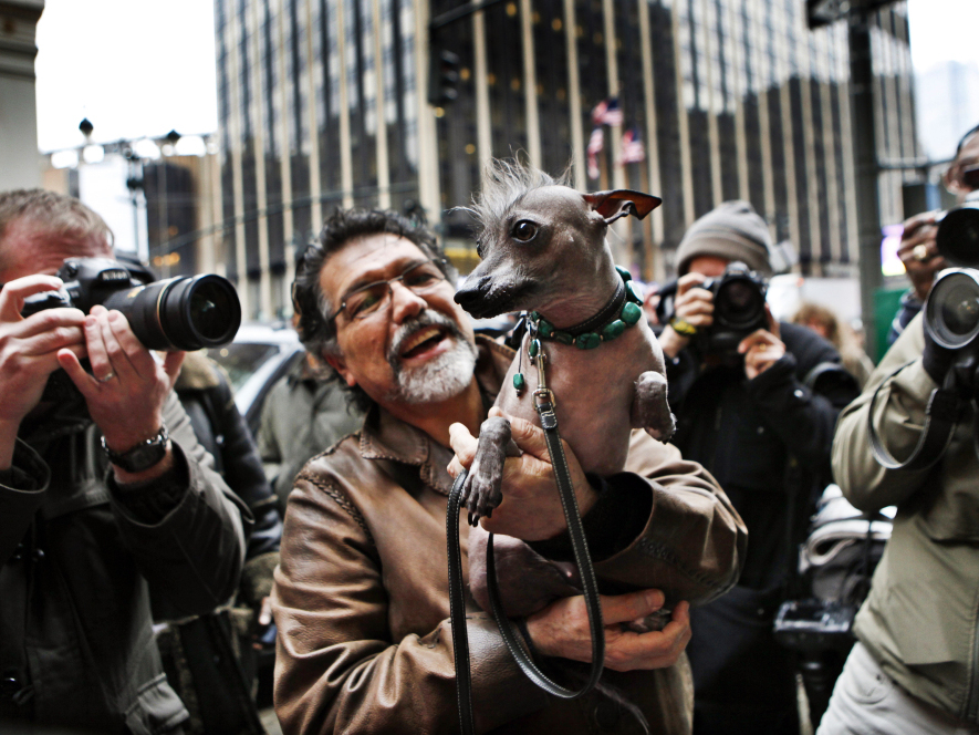 Jose Barrera holds Alma Dulce, his 2-year-old xoloitzcuintli, or Mexican hairless dog, one of six breeds that will compete for the first time in the 136th Westminster Kennel Club Dog Show in New York this week.