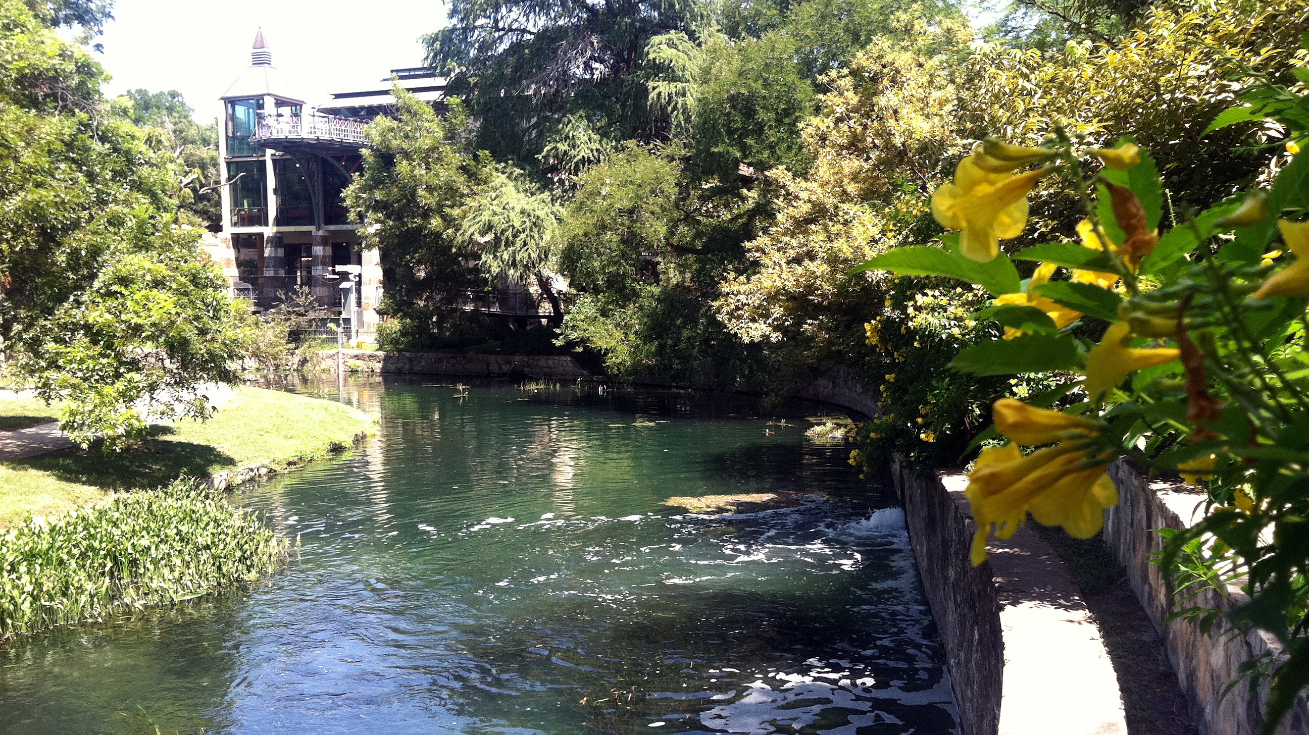 An area in San Antonio's Brackenridge Park where treated wastewater is pumped into the San Antonio River, one of many measures the city has taken to combat drought.