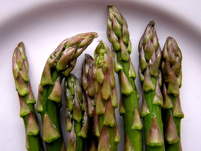 In a recent study, rats that munched on asparagus saw their blood pressure drop.