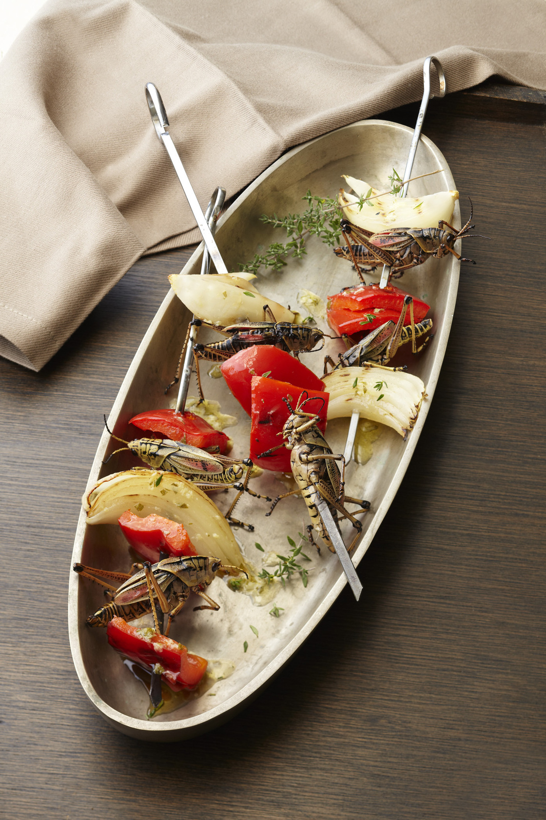 Sheesh! kebabs can be made with Eastern Lubber Grasshoppers (pictured here), katydids or other large-bodied arthropods.