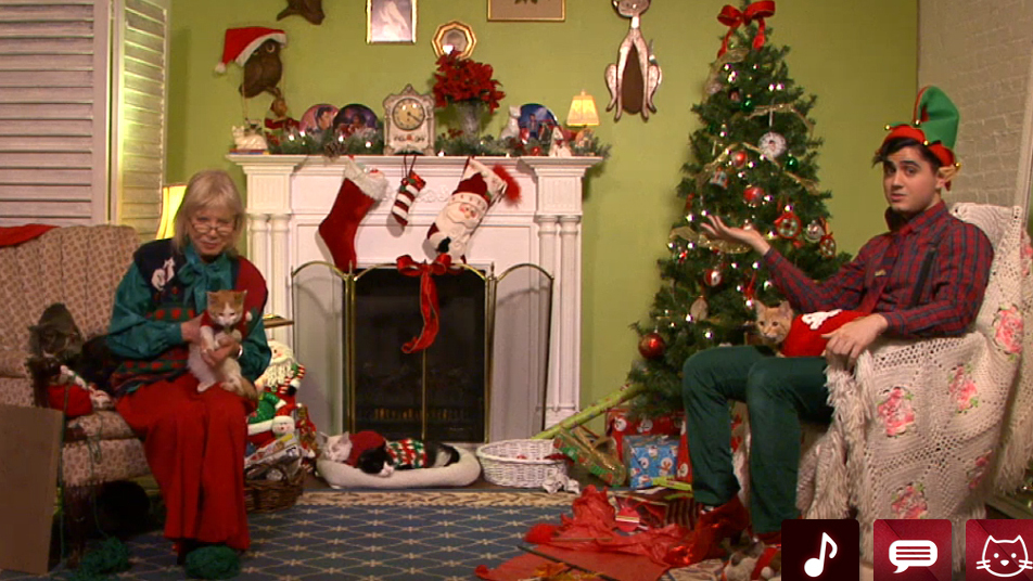 Cuteness Alert Christmas Cats Tv Is Streaming Live The Two Way Npr