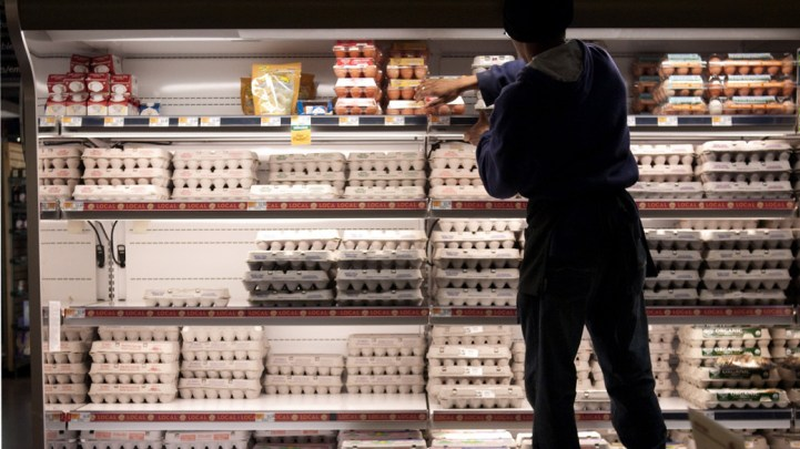 Image result for People in the US need to refrigerate eggs but not in Europe, find out why