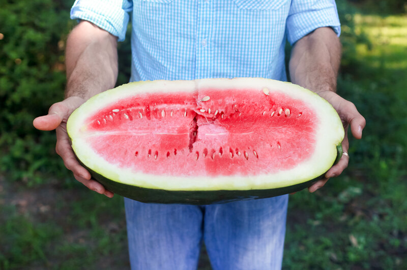 Nat Bradford holds a Bradford watermelon, known for its sweet, fragrant red flesh. The melon was created by Bradford's forefathers around 1840 and was once one of the most important and coveted melons of the South.
