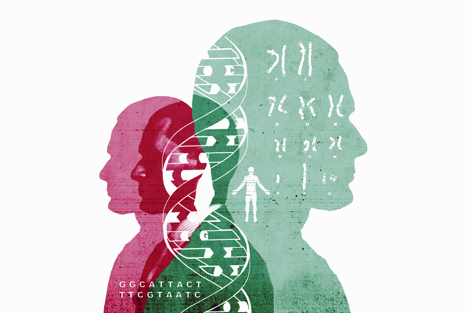 Chromosomes and double helix over silhouettes of man
