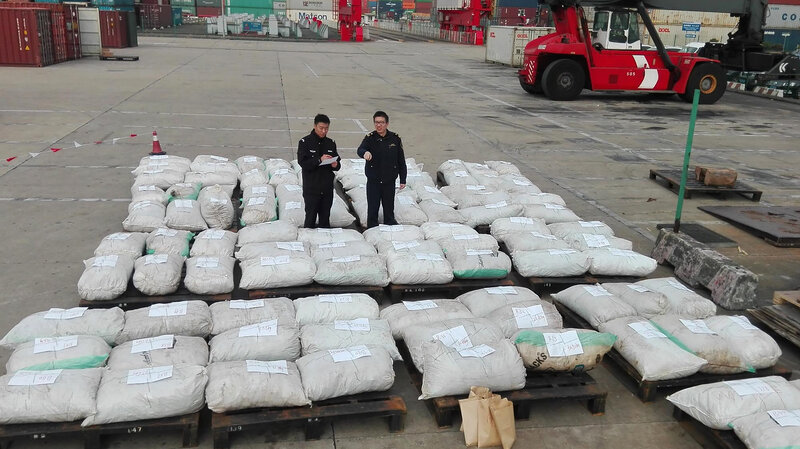 An undated photo, released Wednesday, shows Shanghai customs officers checking pangolin scales at a port in Shanghai. Chinese customs seized over three tonnes of pangolin scales, state media said, in the country's biggest-ever smuggling case involving the animal parts.  STR/AFP/Getty Images