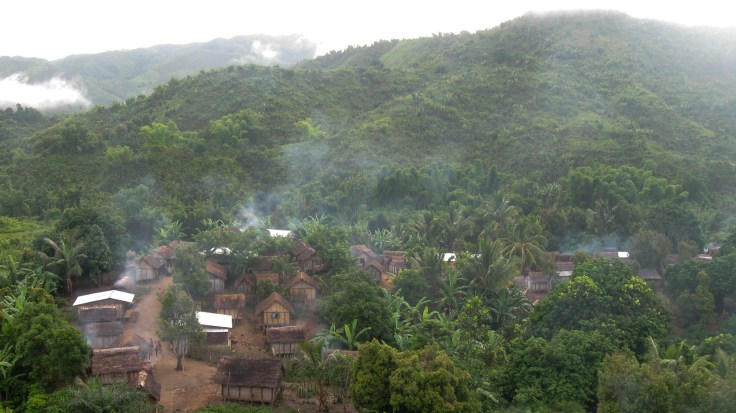 Tens of thousands of people live in villages on the edge of the Ankeniheny-Zahamena Corridor rainforest in Madagascar. A government policy now bans cutting down trees to get more land for farming.