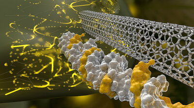 Scientists Thread A Nano-Needle To Modify The Genes Of Plants